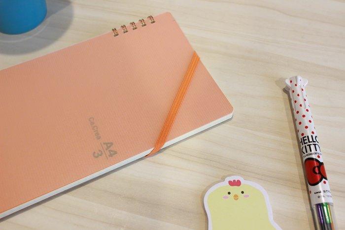 誠品重點品牌推薦PLUS Ca.Crea筆記本-台灣普樂士-日本PLUS A4 三分之一尺寸 (4)