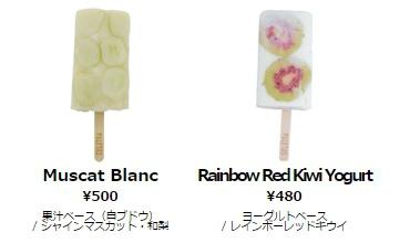 東京自助旅行代官山逛街地圖-Paletas無添加天然健康時尚可愛水果冰棒Frozen Fruit Bar (278)